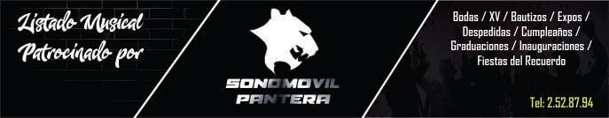Banner Sonomóvil Pantera